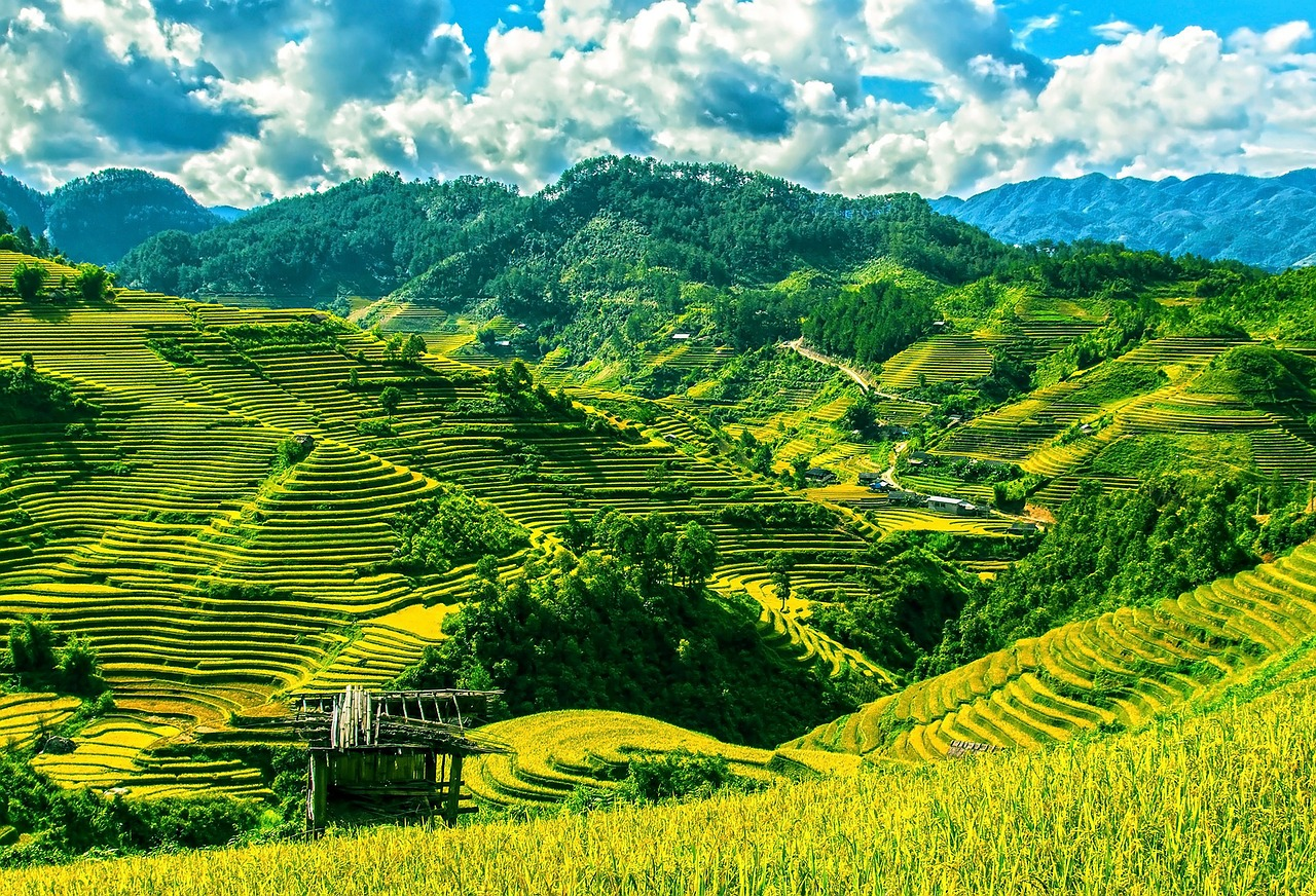 rice-terraces-164622_1280