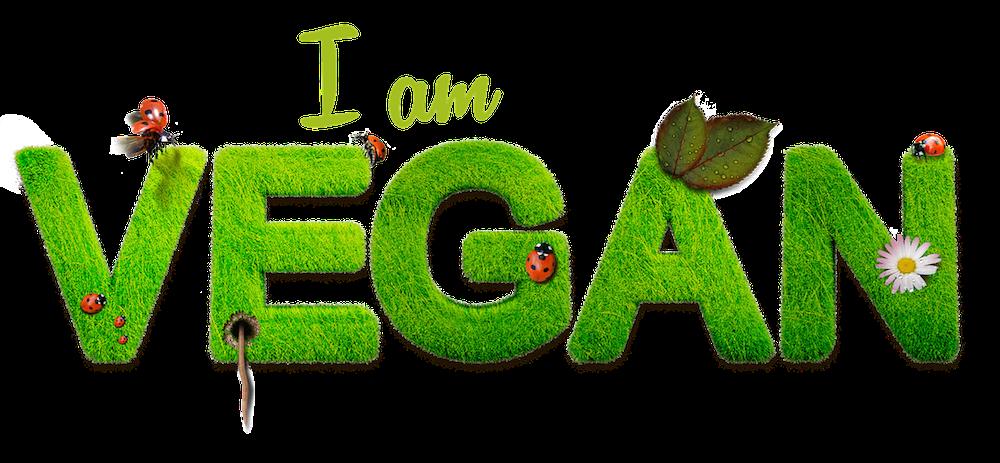 vegan-1091086_1280