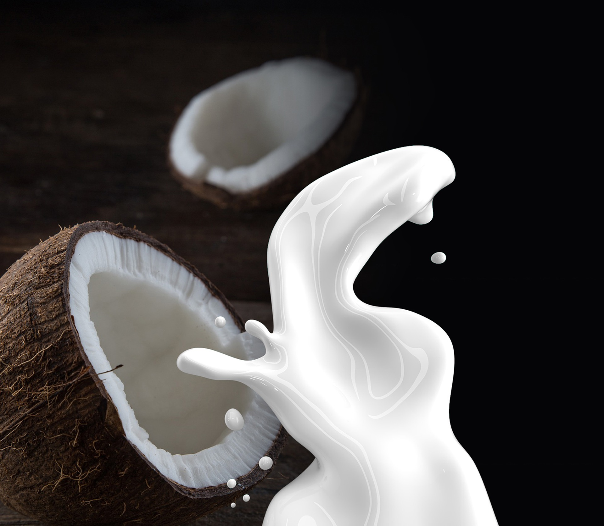 WHY SHOULD WE USE COCONUT EVERY DAY ? | Bliss Saigon Magazine